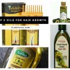 Top 5 Oils for Hair Growth